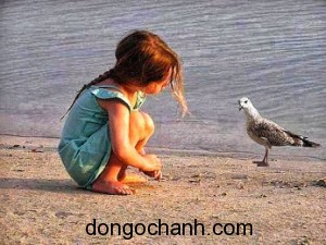 bé và chim